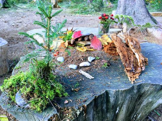 Zwergenlandschaft Waldtagesfamilie