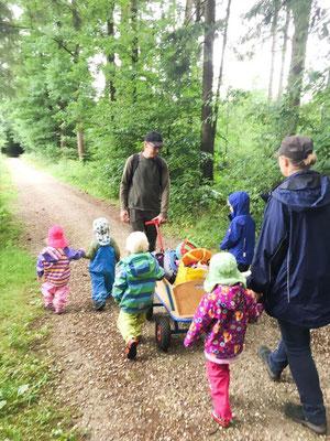 Wandern im Wald Waldtagesfamilie