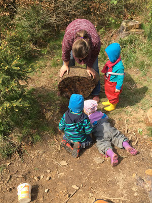 Beobachten Waldtagesfamilie