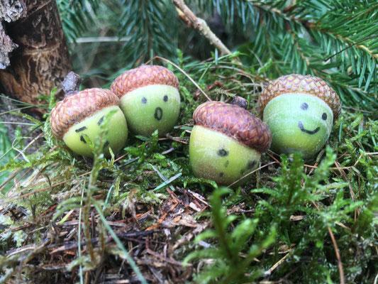 Eichelgesichter Waldtagesfamilie