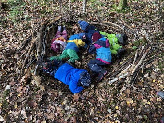 Nest Waldtagesfamilie