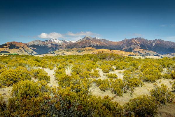 Bild Nr. 2019_4624: Landschaft mit Bergen im Hintergrund in Neuseeland