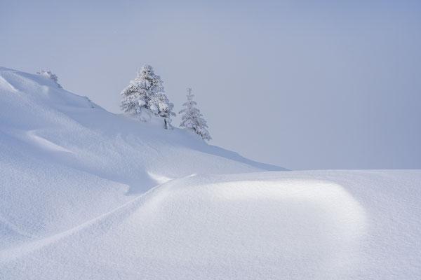 Bild Nr. 2020_0254: Winterlandschaft