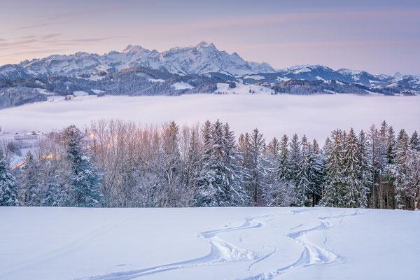 Bild Nr. 2020_9859: Winterliches Säntispanorama