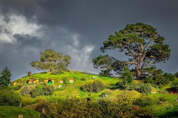 Bild Nr. 2019_6058: Hobbiton Movie Set, Neuseeland