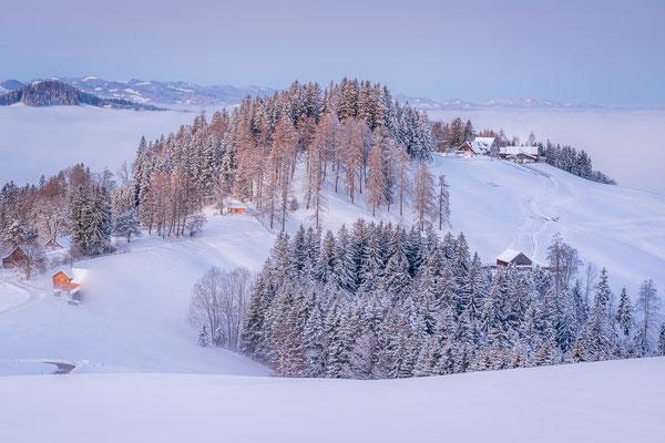 Bild Nr. 2020_9881: Wintermorgen über dem Nebel