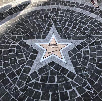 Freiburger Gartenbau Gelsomino - Stern-Ornamente - Walk of Fame - Europapark Rust