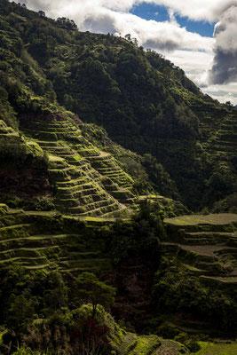 Banaue Rice-Terraces, Philippines.