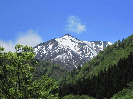 正面にそびえる残雪の大朝日岳