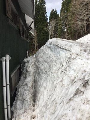 さすがに建物裏手は屋根の雪も落ちるので5mほどの残雪