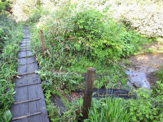 避難小屋手前の木道にある水場(避難小屋から1分)