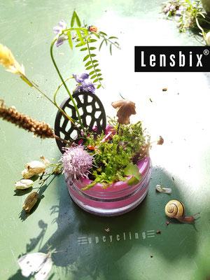 Lensbix upcycling -  Artenvielfalt der süßen Miniaturen im Minibiotop  / Kontaktlinsenbehälter / Kontaktlinsenbox / Box für Kontaktlinsenaufbewahrung  / Kontaktlinsendose / #Kontaktlinsen-behaelter