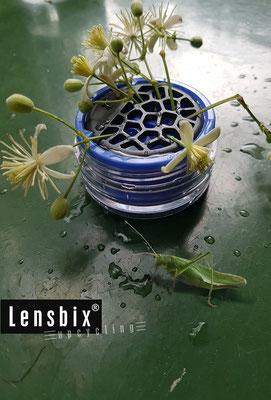 Lensbix upcycling - ungeplante Übernahme der Steckvase  /  Kontaktlinsenbehälter / Kontaktlinsenbox / Box für Kontaktlinsenaufbewahrung  / Kontaktlinsendose / #Kontaktlinsen-behaelter