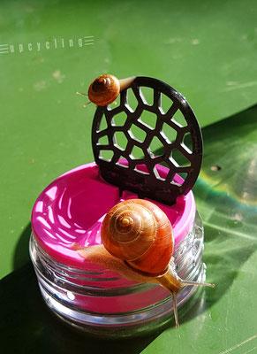 Lensbix upcycling -  Mutter chillt und Junior klettert  / Kontaktlinsenbehälter / Kontaktlinsenbox / Box für Kontaktlinsenaufbewahrung  / Kontaktlinsendose / Kontaktlinsen-behaelter
