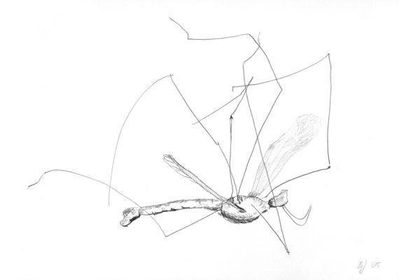 Schneider, Bleistift auf Papier