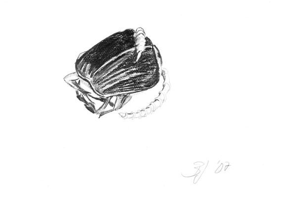 Kafer, Bleistift auf Papier