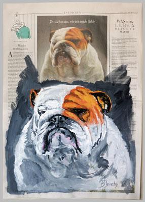 Bulldogge, 2018, 40 x 55, Gouache und Tempera auf Zeitungspapier