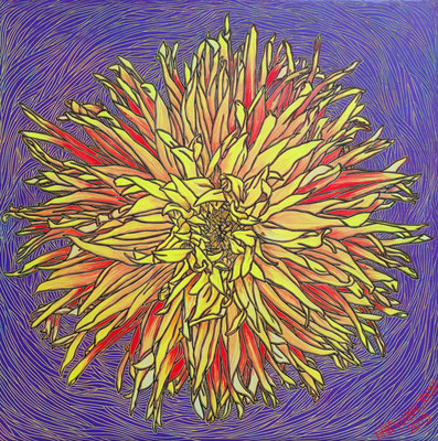 Dahlie, 60 x 60 cm, Acryl auf Leinwand (Kkeul Malerei)---------------------- 달리아, 60 x 60 cm, 캔버스에 아크릴(끌 말러라이)