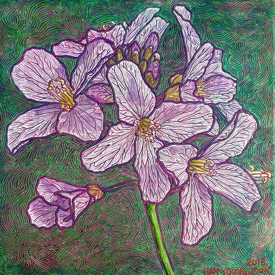 Wiesenschaumkraut, 50 x 50 cm,  Acryl auf Leinwand (Kkeul Malerei)----------- 메이플라워 꽃, 50 x 50 cm, 캔버스에 아크릴(끌 말러라이)