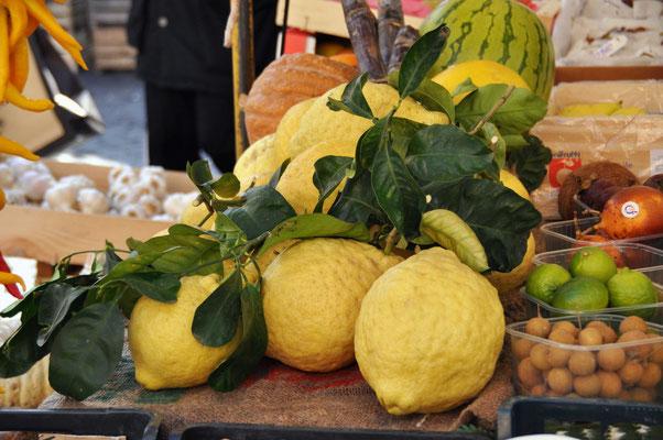 Piazza Campo Dé Fiori N° 5 - Riesen Zitronen