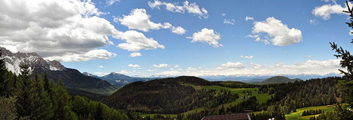 Rodendecker Alm N°1 / Südtirol