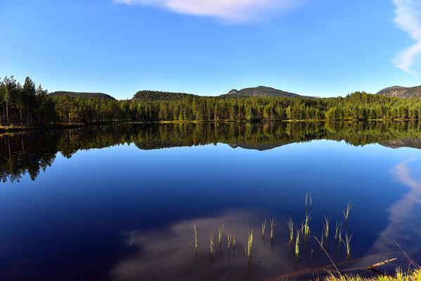 Norwegen #2