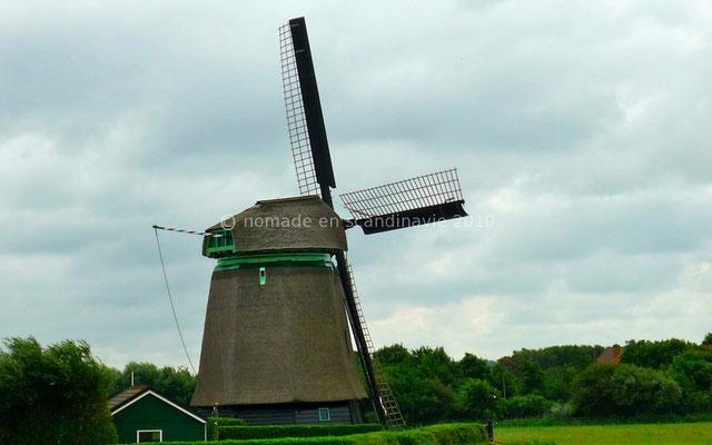 Un des nombreux moulins hollandais.