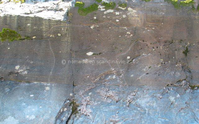 Les gravures rupestres de Bolareinen: le renne