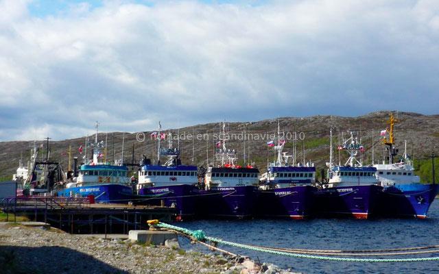 Flottille importante de pêcheurs de crabes géants, russes et norvégiens