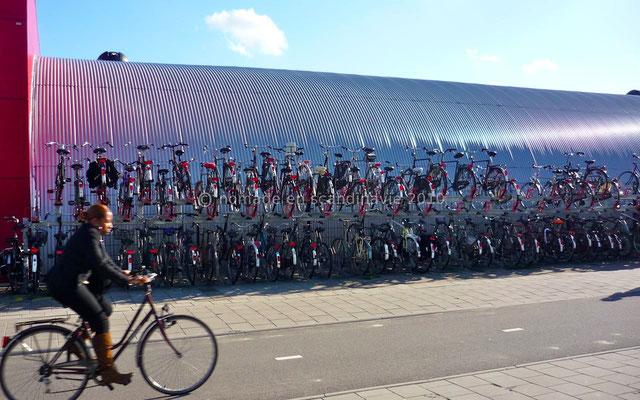 Des vélos, des vélos...