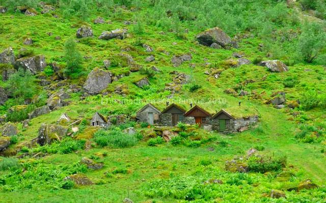 Petites maisons au toit couvert d'herbe