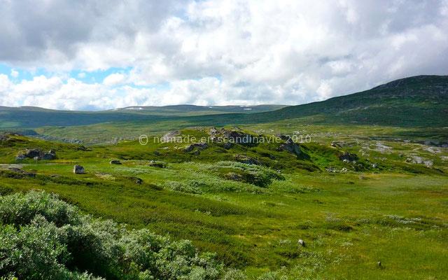 Sur le plateau de Hardangervidda