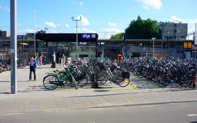 ... et encore des vélos!