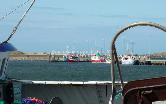 Port de Ringkøbing