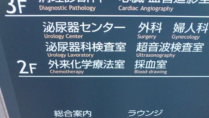 尿路結石の治療法は?