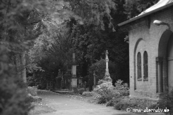 Ganz schön unheimlich, so eine Friedhofsallee ...
