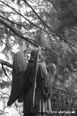 Engelstatuen gibt es auf dem Kölner Melaten-Friedhof häufig.