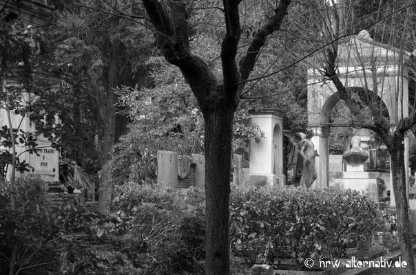 Impressionen des Campos Veranos in Rom
