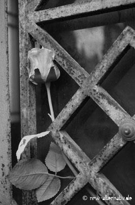 Liebevolle Andenken an die Toten prägen das Friedhofsbild.