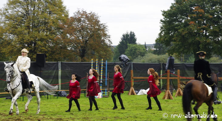 Darbietung im Aussenbereich der Messe: Pferde und irischer Tanz