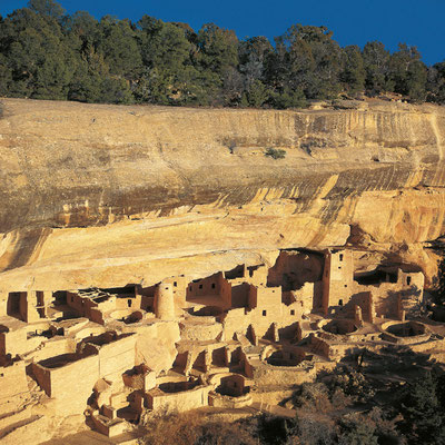 Cliff Palace I Mesa Verde Nationalpark I Colorado
