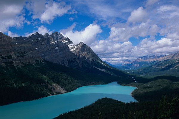Peyto Lake I Banff Nationalpark I Alberta I Kanada