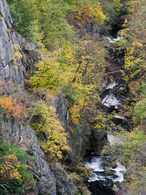 Bodetal I Nationalpark Harz