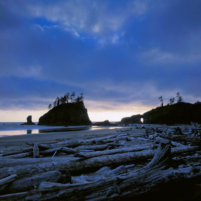 Second Beach I Olympic Nationalpark I Washington