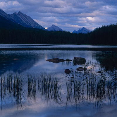 Honeymoon Lake I Jesper Nationalpark I Alberta I Kanada