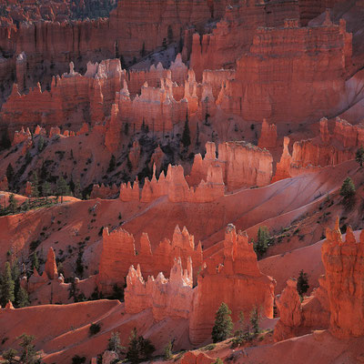 Sunrise Point I Bryce Canyon Nationalpark I Utah
