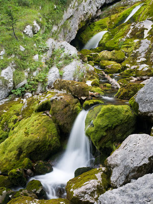 Triglav Nationalpark I Slowenien