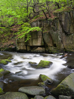 Bodetal I Nationalpark Harz
