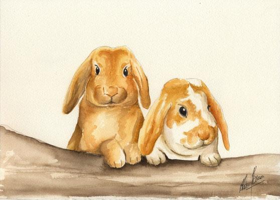 Les lapins - 20x25cm - Aquarelle - 30€