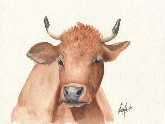 Vache - 18x24cm - Aquarelle - Vendu